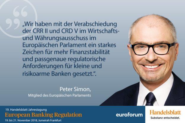 Peter Simon, Europäisches Parlament, Referent Bankenaufsicht