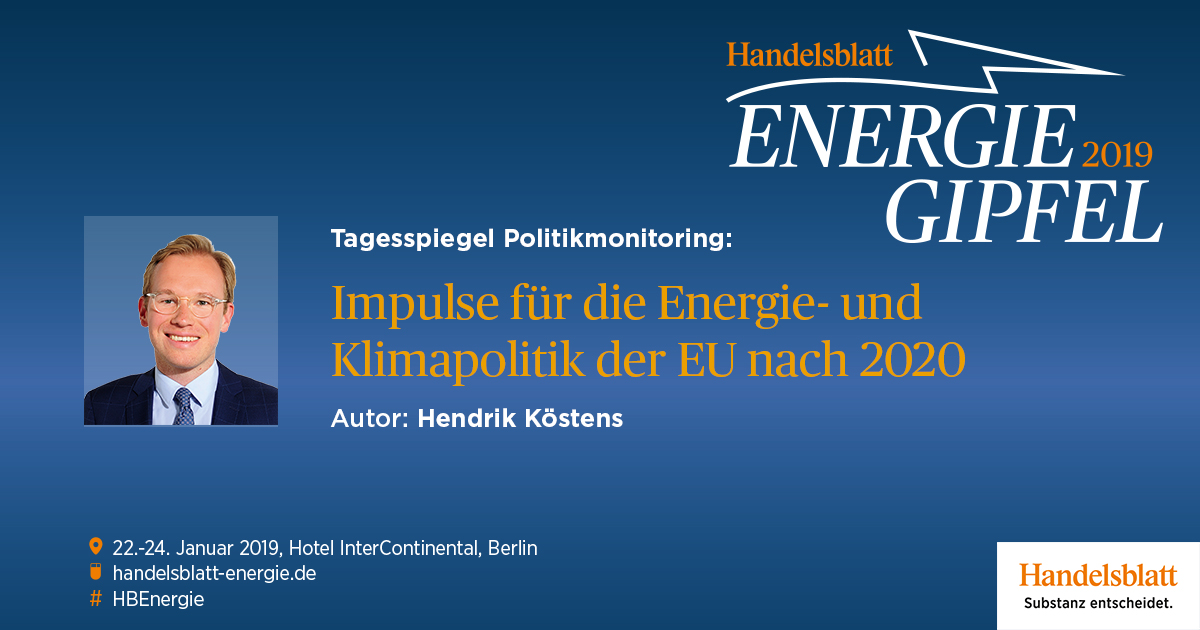 Tagesspiegel Politikmonitoring: Impulse für die Energie- und Klimapolitik der EU nach 2020