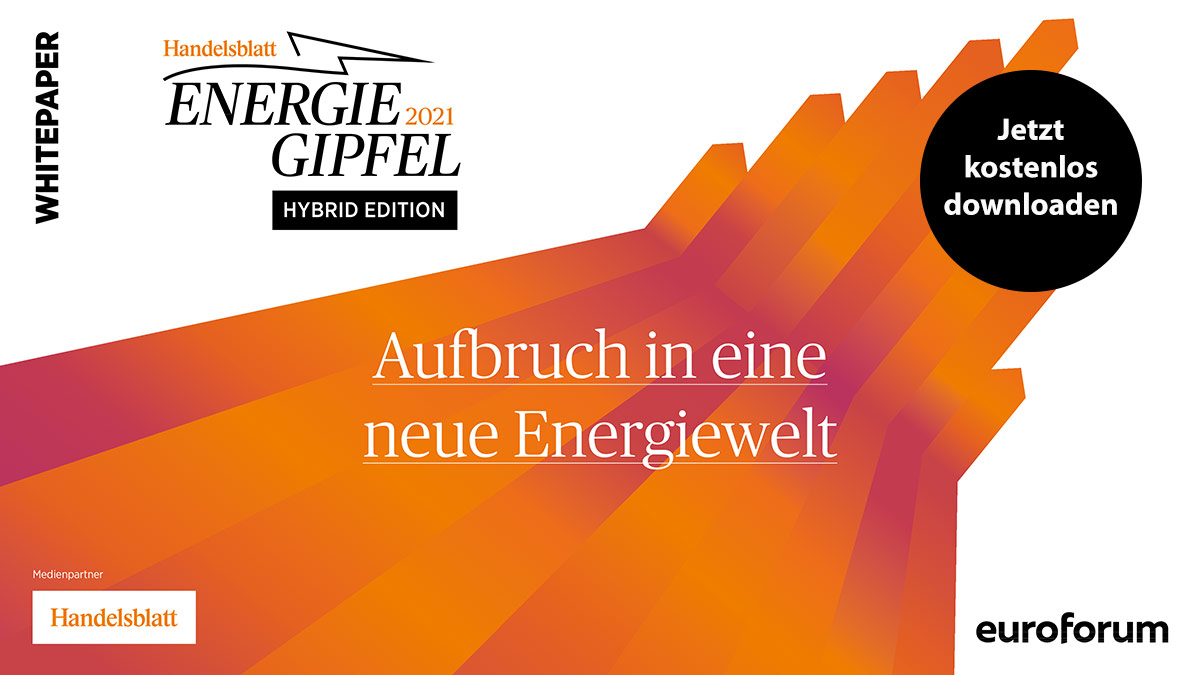 Whitepaper: Aufbruch in eine neue Energiewelt