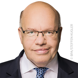 Peter Altmaier, MdB