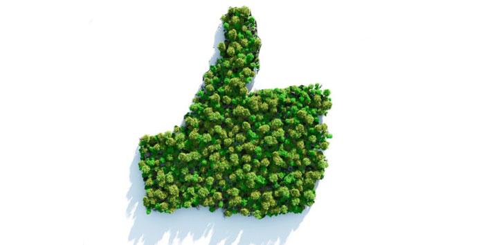 Green Deal und die Auswirkungen auf die Wirtschaft